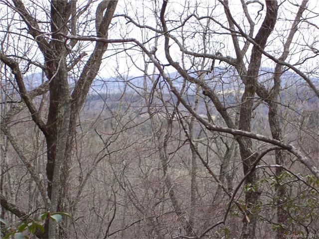 0 Cedar Gap Way 48,49,53,52, Mills River, NC 28759 (#3356940) :: Exit Mountain Realty
