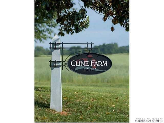 #13 Clay Hill Lane #13, Lincolnton, NC 28092 (#3356944) :: The Ann Rudd Group