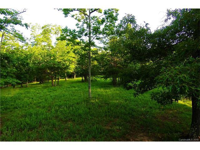 4 N Highland Road #4, Mill Spring, NC 28756 (#3356968) :: Stephen Cooley Real Estate Group