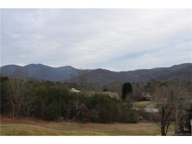 2 Valley Drive, Weaverville, NC 28787 (#3356996) :: Miller Realty Group
