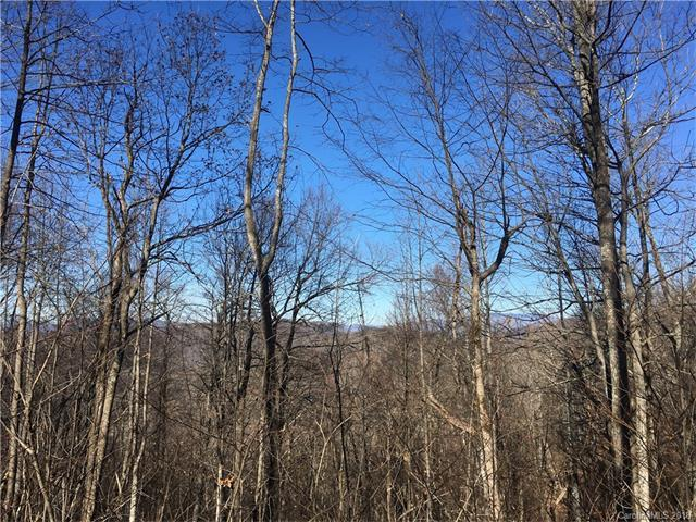98 Adderfly Court #98, Little Switzerland, NC 28749 (#3357656) :: Mossy Oak Properties Land and Luxury