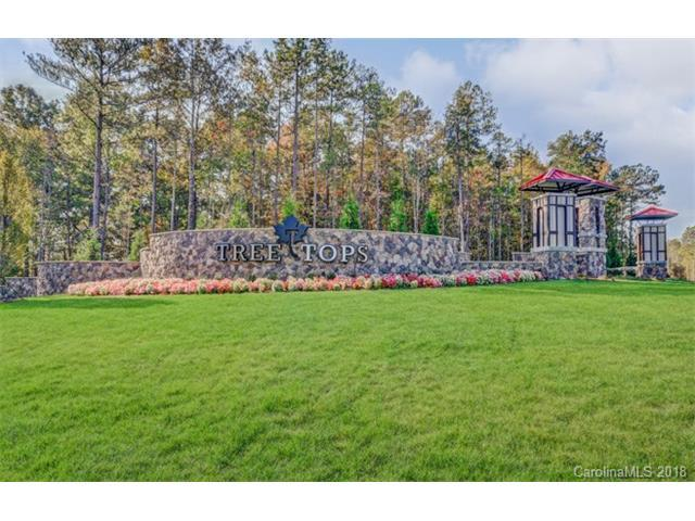 5005 Redwood Grove Trail #89, Lancaster, SC 29720 (#3357754) :: LePage Johnson Realty Group, LLC