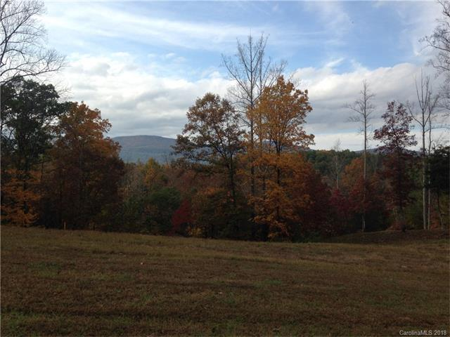24 Mountain Parkway Lot 24, Mp3b, Mill Spring, NC 28756 (#3357820) :: Stephen Cooley Real Estate Group