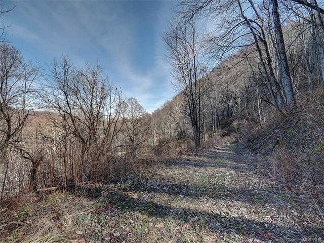 Lots 19 & 20 Windsor Drive, Waynesville, NC 28785 (#3358463) :: Exit Mountain Realty