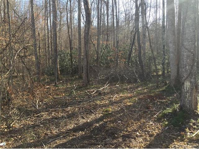 Lot 138 Overland Trail #138, Marion, NC 28752 (#3358585) :: Zanthia Hastings Team