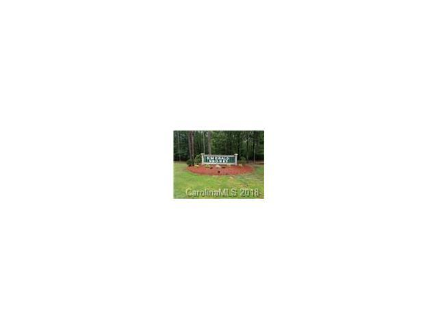 Lot 37 Fern Drive #37, Mount Gilead, NC 27306 (#3358605) :: The Elite Group