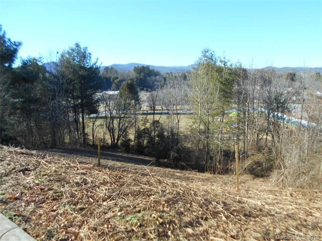 L17 Eagle View Drive #17, Brevard, NC 28712 (#3358630) :: The Temple Team