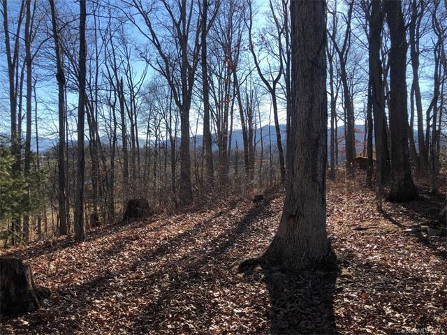 0 Blueberry Hill Drive #0, Clyde, NC 28721 (#3358723) :: MECA Realty, LLC