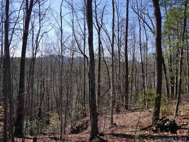 9999 High Trail Drive #164, Nebo, NC 28761 (#3359258) :: Exit Mountain Realty