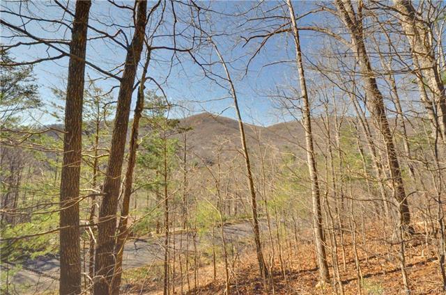 9999 Tryst Drive #6, Asheville, NC 28805 (#3359548) :: Rinehart Realty