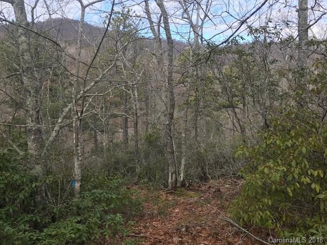 0000 Wapama Falls Drive #16, Black Mountain, NC 28711 (#3359881) :: Puffer Properties