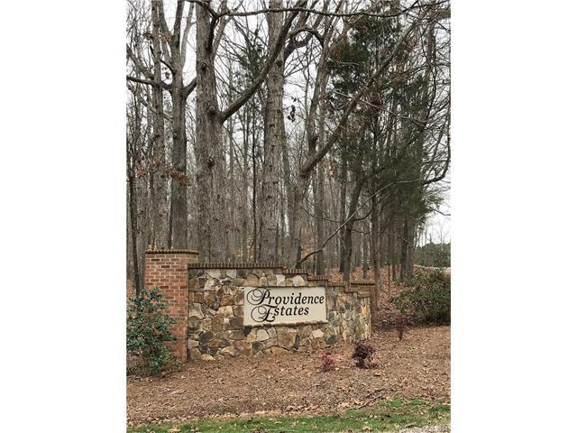 000 Banyan Way, Marvin, NC 28173 (#3360198) :: Caulder Realty and Land Co.