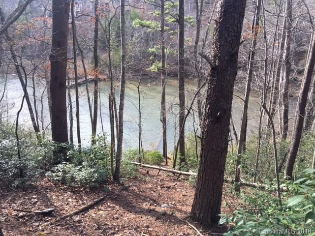 Lot 3 Indian Summer Lane #3, Mill Spring, NC 28756 (#3361039) :: Stephen Cooley Real Estate Group