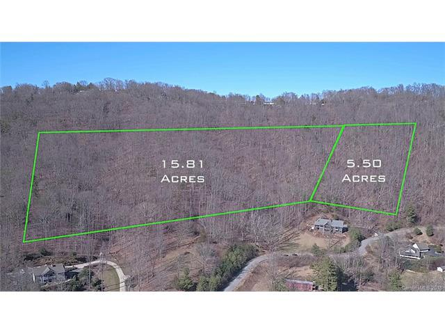 9999 Town Mountain Road, Asheville, NC 28804 (#3361164) :: Carlyle Properties