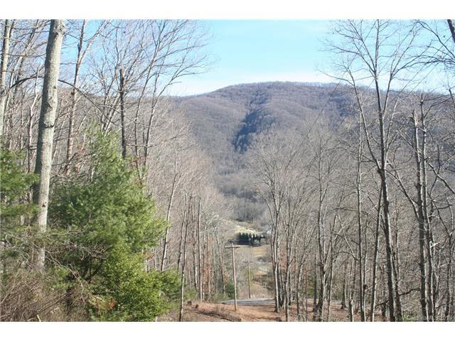 999 Silent Forest Drive #22, Canton, NC 28716 (#3361424) :: Cloninger Properties