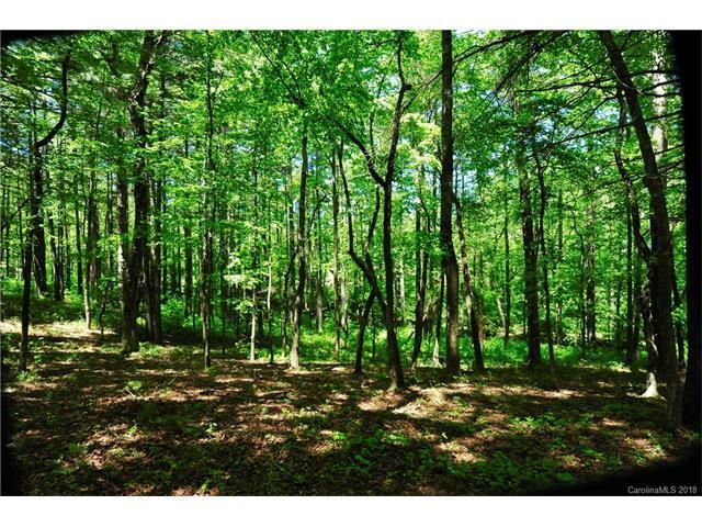 27 Deep Creek Trail #47, Arden, NC 28704 (#3361667) :: Keller Williams Biltmore Village