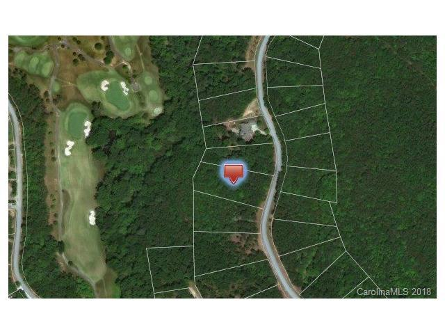 Lot 33 Deep Gap Farm Road E, Mill Spring, NC 28756 (#3362450) :: High Performance Real Estate Advisors
