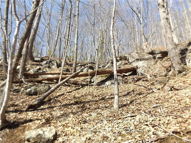 9999 Sequoia Trail 13,14,&15, Leicester, NC 28748 (#3362498) :: Mossy Oak Properties Land and Luxury