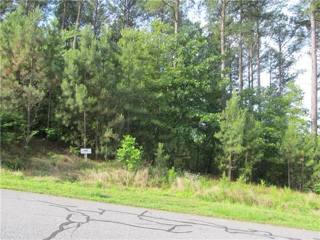 2192 Lighthouse Lane #70, Connelly Springs, NC 28612 (#3362762) :: Besecker Homes Team