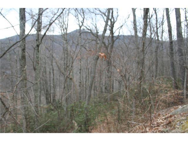 10 Wedgewood Terrace #942, Black Mountain, NC 28711 (#3363039) :: Keller Williams Biltmore Village