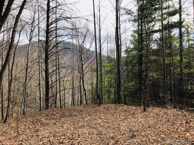 129 Silver Creek Drive #129, Morganton, NC 28655 (#3363758) :: Stephen Cooley Real Estate Group