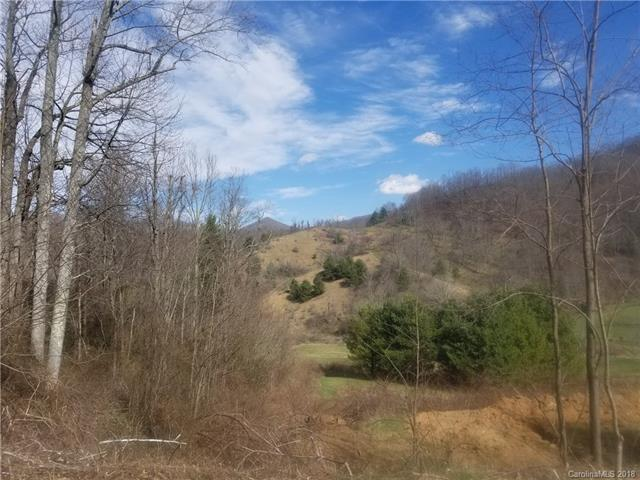 000 Blazing Star Road #3, Clyde, NC 28721 (#3363788) :: Puffer Properties