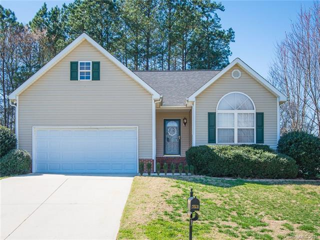 753 Painted Lady Court, Rock Hill, SC 29732 (#3364237) :: Exit Mountain Realty