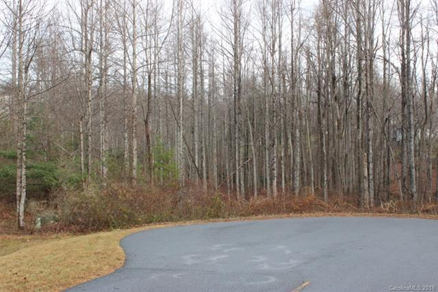 41 Brookhaven Court, Flat Rock, NC 28731 (#3364555) :: Stephen Cooley Real Estate Group