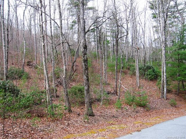 92 Big Bear Trail #5, Zirconia, NC 28790 (#3364834) :: Puffer Properties