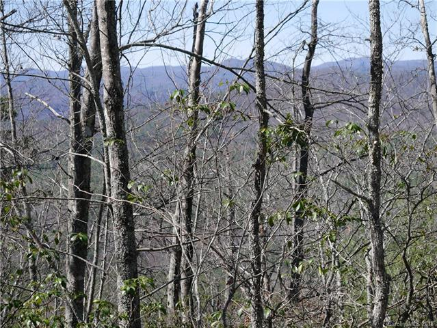 0 Ruffed Grouse Road, Brevard, NC 28712 (#3365164) :: Puffer Properties