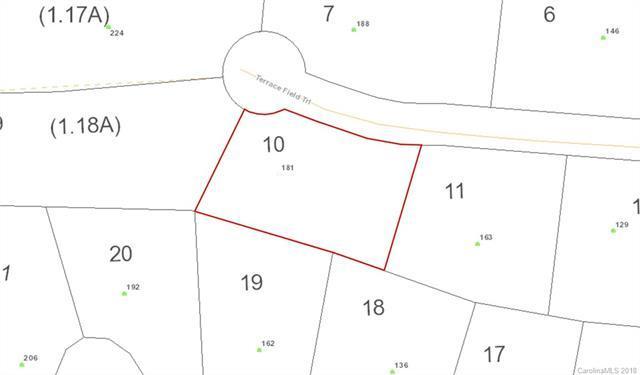 181 Terrace Field Trail #10, Flat Rock, NC 28731 (#3365487) :: LePage Johnson Realty Group, LLC