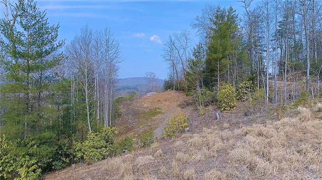 415 Skybrook Farm Drive 2R, Hendersonville, NC 28739 (#3365547) :: Caulder Realty and Land Co.