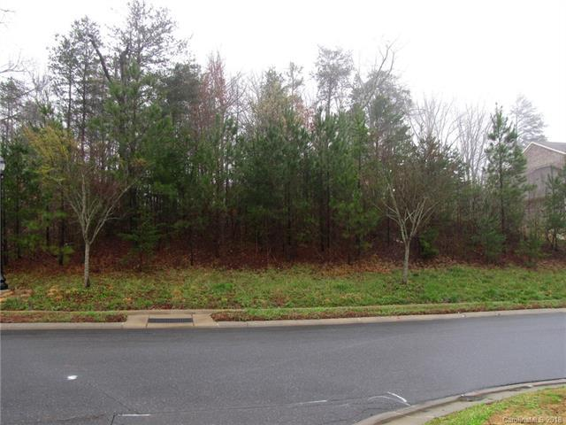16301 Bastille Drive, Charlotte, NC 28278 (#3365702) :: The Sarver Group