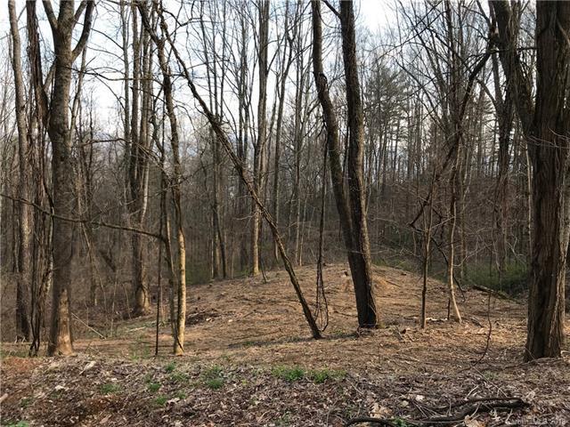 00 Eagle Gap Road 45,47, Waynesville, NC 28786 (#3365833) :: Mossy Oak Properties Land and Luxury