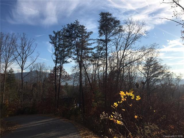 7 Stonecrest Mountain Drive #7, Black Mountain, NC 28711 (#3366278) :: Stephen Cooley Real Estate Group
