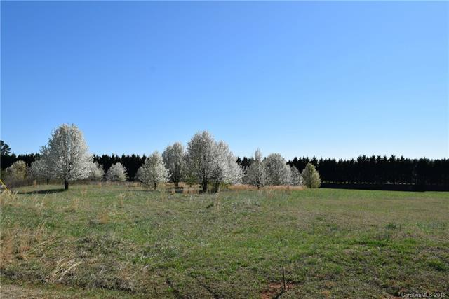 00 Evondale Road, Crouse, NC 28033 (#3366515) :: Mossy Oak Properties Land and Luxury