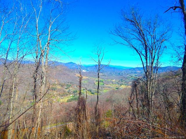 Lot 46 Cattail Lane, Waynesville, NC 28786 (#3367039) :: Exit Mountain Realty