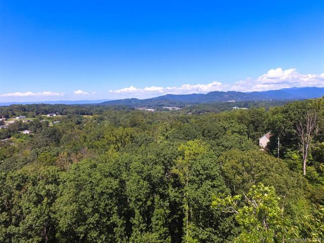 34 Forest Spring Drive #32, Asheville, NC 28804 (#3367076) :: RE/MAX Metrolina