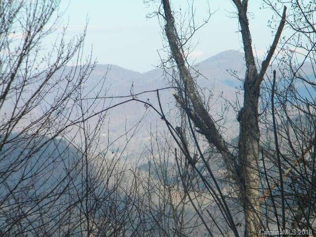 126 Large Poplar Trail #126, Waynesville, NC 28785 (#3367706) :: Mossy Oak Properties Land and Luxury