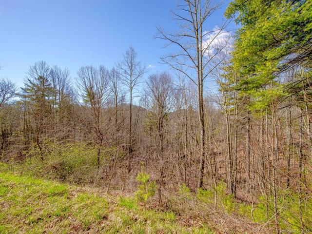 243 Starling Pass #108, Asheville, NC 28804 (#3368252) :: Exit Mountain Realty