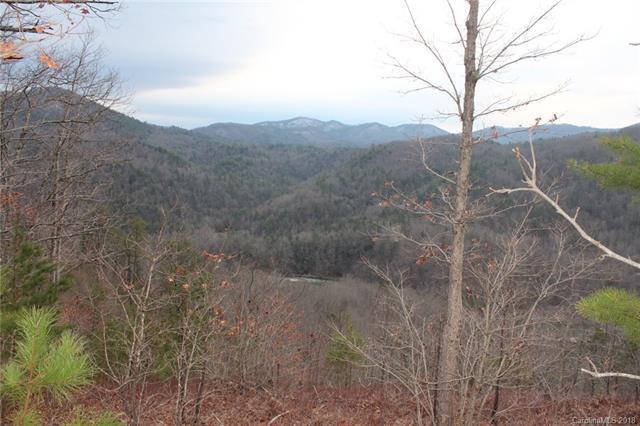 196 Red Fox Trail #41, Marshall, NC 28753 (#3368278) :: Puffer Properties