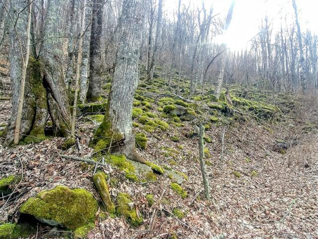 C-19 Oswego Way, Waynesville, NC 28785 (#3368437) :: Exit Mountain Realty