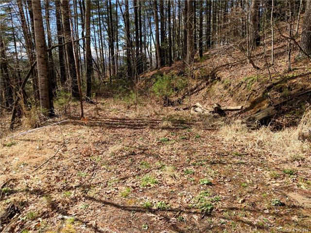 25 Treeland Road 1B, Hendersonville, NC 28739 (#3368569) :: Puffer Properties