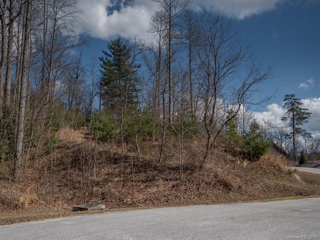 120 Mountain Elder Lane, Hendersonville, NC 28739 (#3368721) :: Exit Mountain Realty
