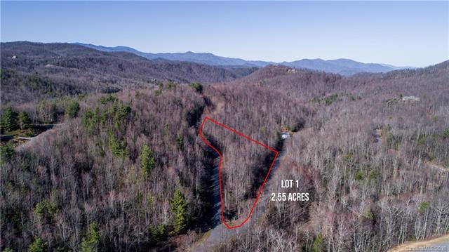 Lot 1 Catawba Falls Parkway, Black Mountain, NC 28711 (#3369239) :: Rinehart Realty