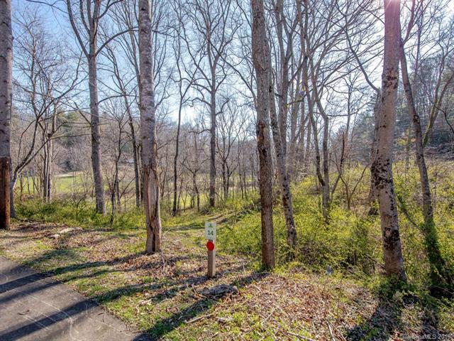 3 Wandering Oaks Lane, Asheville, NC 28805 (#3369435) :: Leigh Brown and Associates with RE/MAX Executive Realty