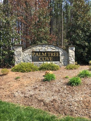 335 Palm Cove Way, York, SC 29745 (#3369730) :: The Kessinger Group