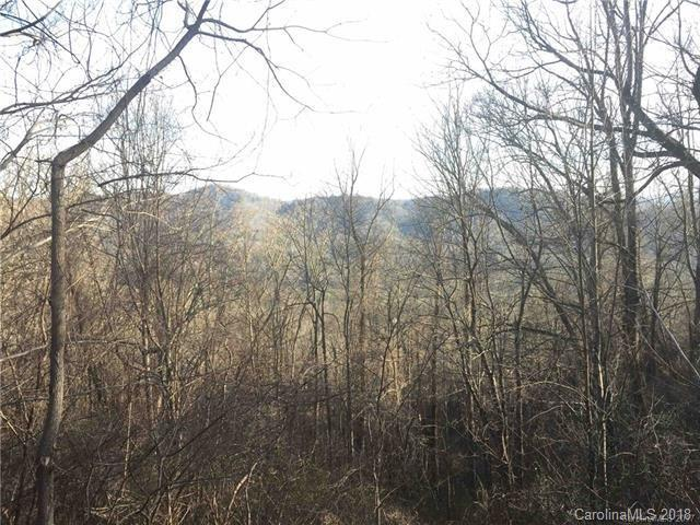Lot 20 Elk Mountain Scenic Highway #20, Asheville, NC 28804 (#3369838) :: RE/MAX Four Seasons Realty