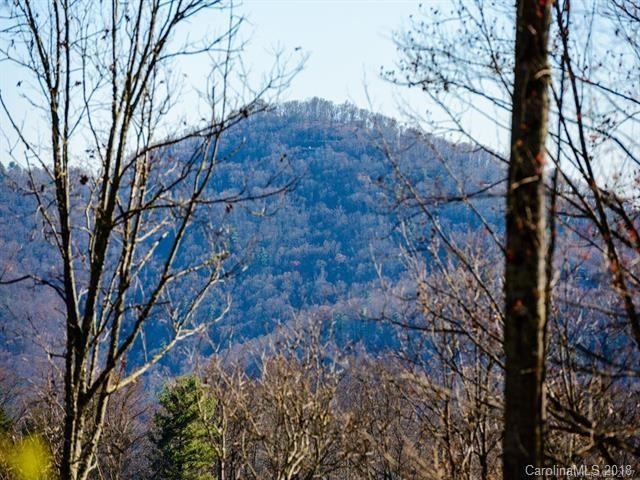 Lot 12 Elk Mountain Scenic Highway #12, Asheville, NC 28804 (#3369878) :: RE/MAX Four Seasons Realty