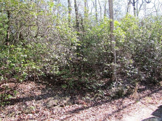 00 Dogwood Lane D-5, Penrose, NC 28766 (#3370132) :: Puffer Properties